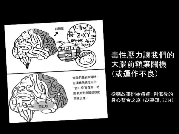 毒性壓力讓大腦關機